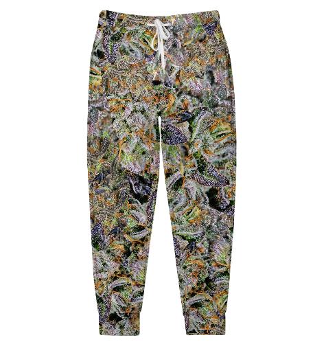 Спортивные штаны женские Макро 420